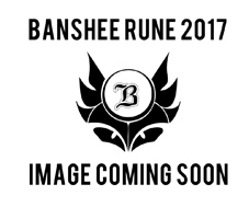 Banshee Rune Sram GX build 2017